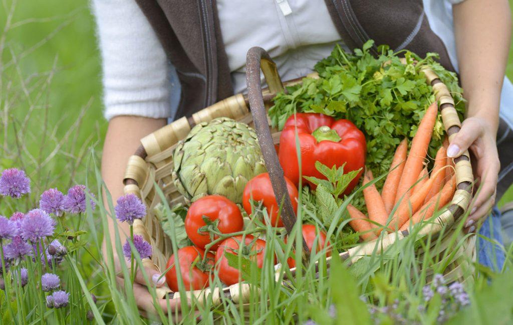 Beneficii pentru sanatate ale legumelor